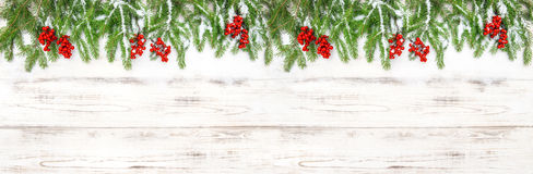 Christmas decoration Floral holidays banner Evergreen tree branc Stock Images
