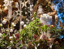 Christmas decoration in flower shop. Royalty Free Stock Photography