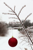 Christmas decoration on frozen branch Stock Image