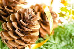 Christmas decoration of fur-tree and cones Royalty Free Stock Image