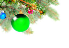Christmas decoration-glass ball on fir branches. Stock Images