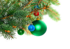 Christmas decoration-glass ball on fir branches. Stock Photos