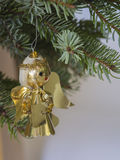 Christmas decoration golden angel on silver spruce branch o Royalty Free Stock Image
