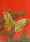 Christmas decoration (golden butterfly) Royalty Free Stock Photography