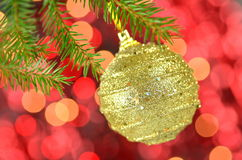 Christmas decoration, golden Christmas ball hanging on spruce twig Royalty Free Stock Image