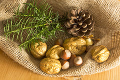 Christmas decoration with golden walnuts royalty free stock image