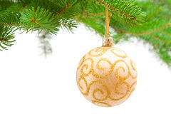 Christmas decoration on green tree Stock Photos