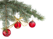 Christmas decoration hanging on the tree Stock Photos