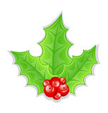 Christmas decoration holly berry branches Stock Image