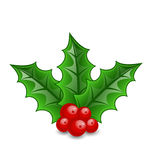 Christmas decoration holly berry branches isolated Stock Photos