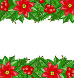 Christmas decoration with holly berry and poinsett Stock Image