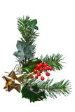 Christmas decoration with holly and gold bow Royalty Free Stock Photos