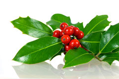 Christmas decoration with holly leaves and berries Stock Image