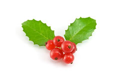 Christmas decoration with holly leaves and berries Stock Photos