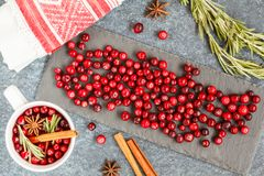 Hot winter mulled wine with cranberries and spices. Stock Image