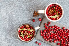 Hot winter mulled wine with cranberries and spices. Royalty Free Stock Image