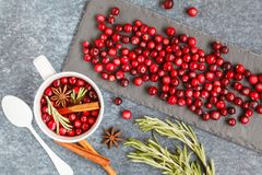 Hot winter mulled wine with cranberries and spices. Stock Photos