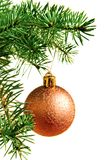 Christmas decoration isolated on the tree. Stock Photos