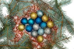 Christmas decorations and branches were eaten with a closeup. stock photos