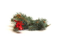 Christmas Decoration. Made of fir tree on white background Stock Images