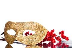 Christmas decoration mask Royalty Free Stock Image