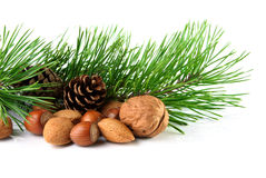 Christmas decoration with mixed nuts, pine twig and pine cones. On a white background Stock Photography