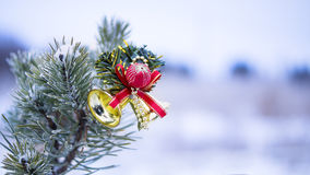Christmas decoration on natural fir Royalty Free Stock Photo