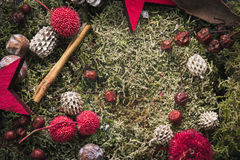 Christmas decoration  on natural with moss with copy space backg. Round, top view Stock Photography