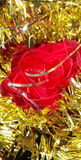 Christmas decoration natural red rose with gold tisel Royalty Free Stock Image