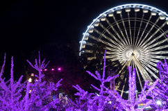 Christmas decoration in Nice, France Stock Photo