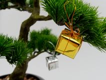 Christmas decoration or ornament hang on artificial bonsai tree composed of gold and silver gift box isolated on white background Stock Image