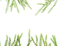 Christmas decoration or ornament laid in rectangular frame shape composed of green pine branch and red and green cane isolated on. White background Royalty Free Stock Photo