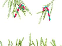 Christmas decoration or ornament laid in rectangular frame shape composed of green pine branch and red and green cane isolated on. White background Stock Photo