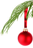Christmas decoration on palm leaf Stock Image