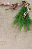 Christmas decoration with pine for a background or frame Stock Photography