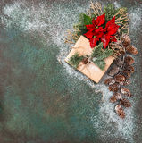 Christmas decoration Pine branches red flowers poinsettia snow Royalty Free Stock Photography