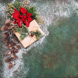 Christmas decoration Pine branches red flowers poinsettia snow Stock Photo