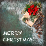 Christmas decoration Pine branches red flowers poinsettia vintag Stock Images