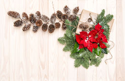 Christmas decoration Pine branches red flowers poinsettia Stock Photos