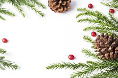 Christmas decoration of pine cone and leaves on white background Stock Image