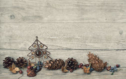 Christmas Decoration pine cones Stock Photos