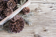 Christmas decoration of pine cones Royalty Free Stock Photo