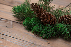 Christmas decoration: pine flowers cone and leaves Stock Image