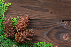 Christmas decoration: pine flowers cone Royalty Free Stock Photography