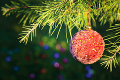 Christmas decoration on pine tree Stock Image