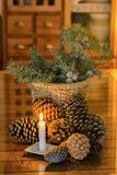 Christmas decoration. With pineapple and juniper branches Royalty Free Stock Photography