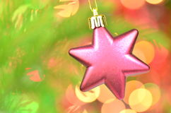 Christmas decoration, pink Christmas star ball hanging on spruce twig Stock Photography