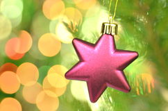 Christmas decoration, pink Christmas star ball hanging on spruce twig Stock Photos