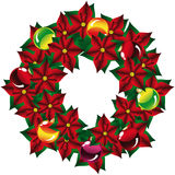 Christmas decoration with Poinsettia, isolated Royalty Free Stock Photo