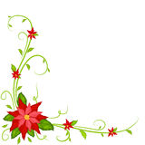 Christmas decoration with poinsettia Royalty Free Stock Images
